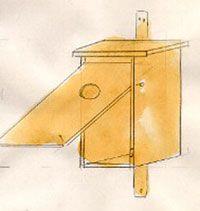 Fågelholk. Telaverad blyertsteckning av Ulf Carlberg