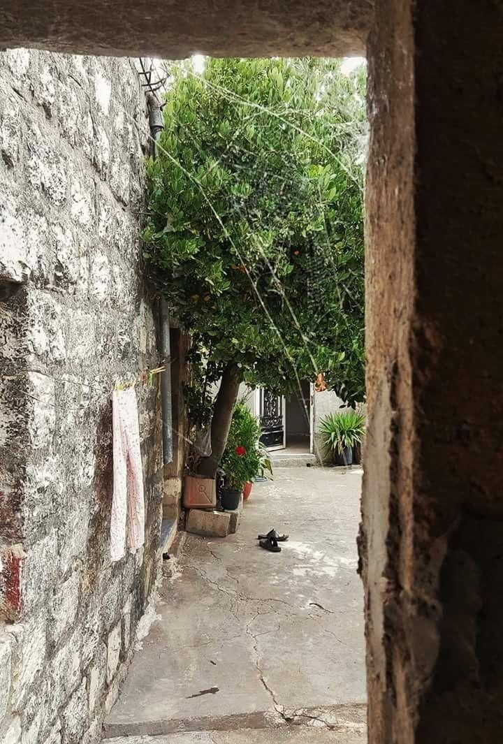 من البيوت القديمة في جنوب لبنان Old Houses Structures Traditional