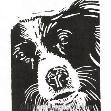 Collie Dog - Original Hand Pulled Linocut Print £18.00