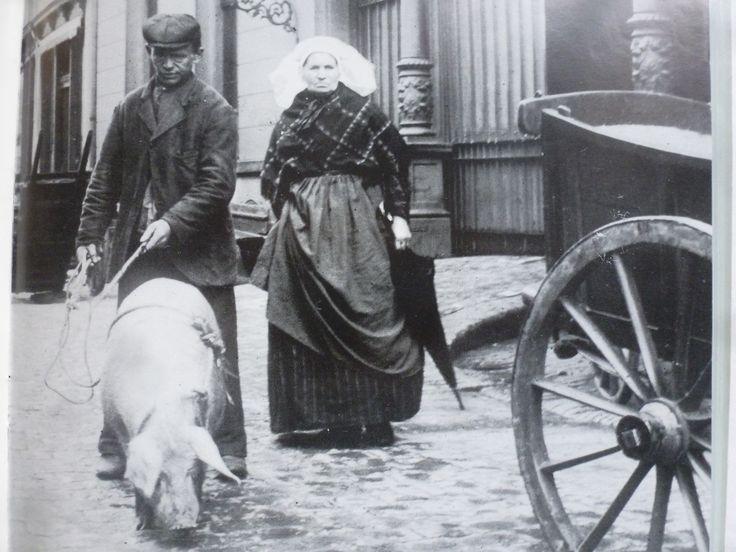 Vrouw met bonte doek en doordat ze haar schort deels omhoog heeft kun je haar streepte rok zien. Oude mode van de 19e eeuw. Later als onderrok een tweede leven.  #NoordBrabant