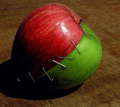 Diyet Yapanlara Öneriler - Sağlık - KizlarSoruyor.com