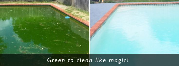 How to restore a green pool back to blue again | Green pool clean out | https://www.yourpoolservice.net/green-pool-cleaning/