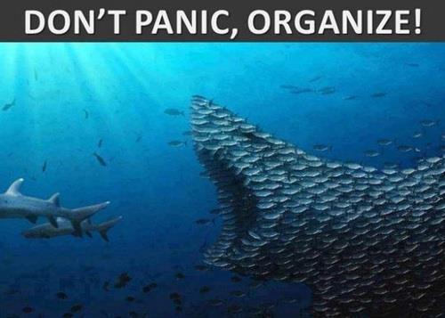 be455f573488eb250c9720e2625a7277 dont panic teamwork organization meme slapcaption com don't panic, organize,Organizing Meme