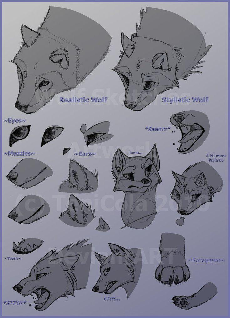 Anime wolf ears wolves animecosplay mangacosplay mha