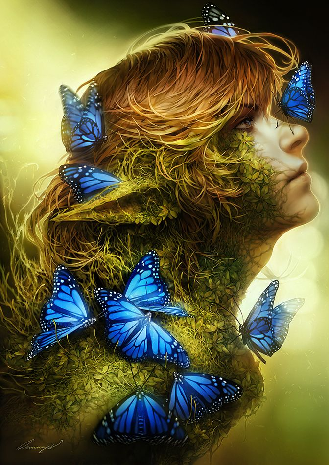 I learned my songs from the butterflies of the forest. - art by by tincek-marincek