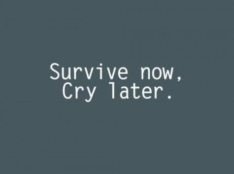 Survive Now. Cry Later. This has become who I am when chaos is at its worst.