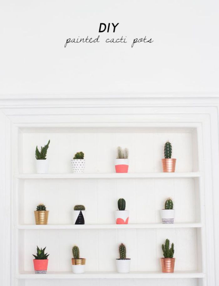 1 - cactus pots