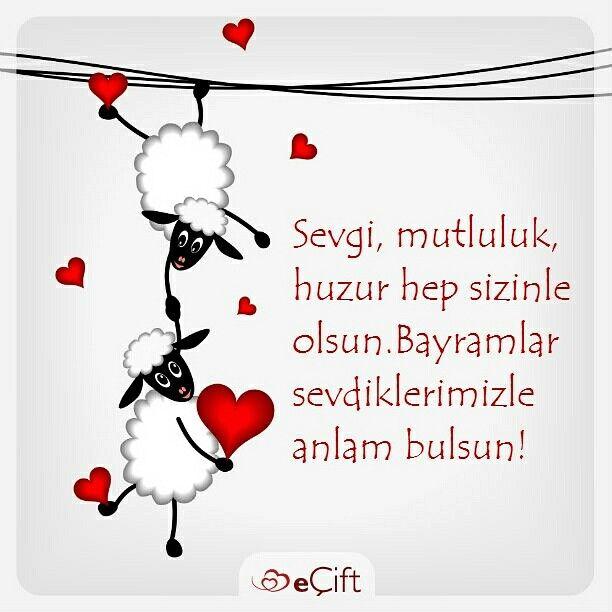 Birlikte nice bayramlara. Kurban Bayramı kutlu olsun! #kurbanbayrami #kurban #koyunkuzu #eid #mubarek #eidmubarek #nicebayramlara #mutlubayramlar #bayram