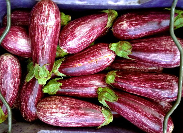Stripy Eggplants from S & C Fiolo