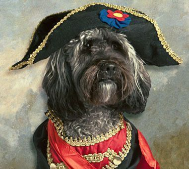 PetsLady's Pick: Cute French Revolution Dog Of The Day