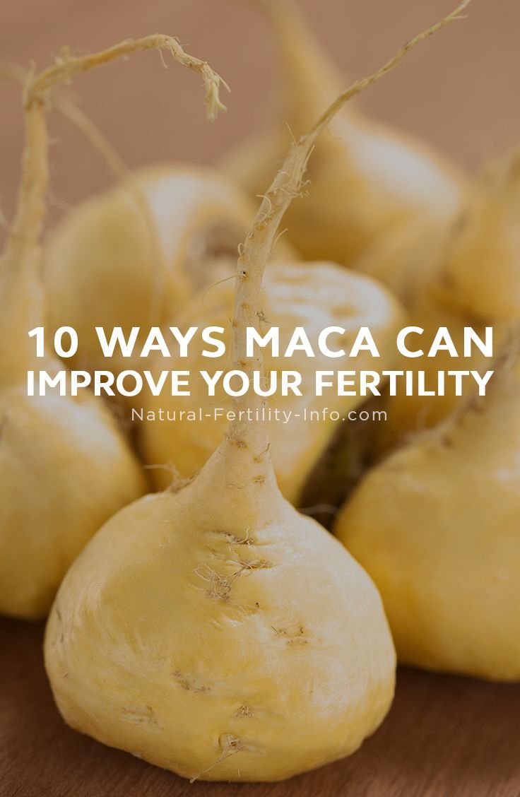 "Increasing in popularity as a medicinal herb, Maca (Lepidium meyenii) is actually a food. This root, indigenous to Peru and the Andes Mountains, is first and foremost a food and considered an important Fertility Superfood… Wondering what a ""Superfood"" is exactly? The definition is… ""su·per·food /ˈso͞opərˌfo͞od/ noun – a nutrient-rich food considered to be especially beneficial for health and well-being."" #fertility #infertility #ttc #ttcsisters #IVF #PCOS #fertilityherbs..."
