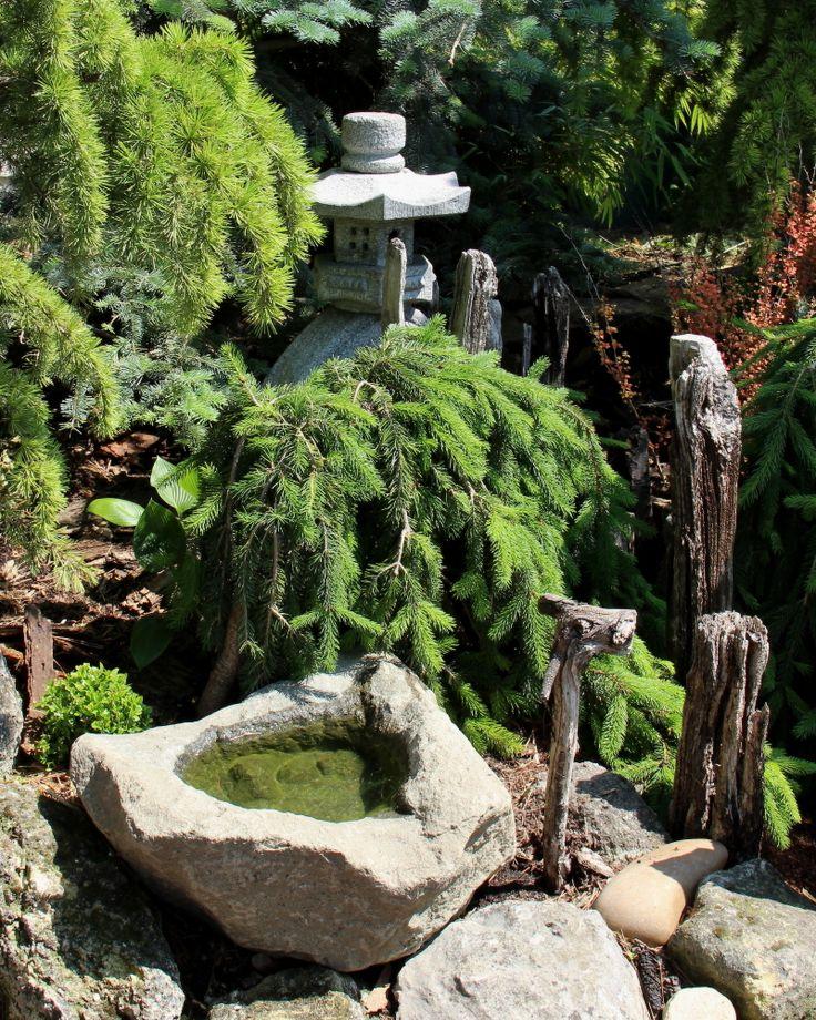 Small bird bath from Zen garden