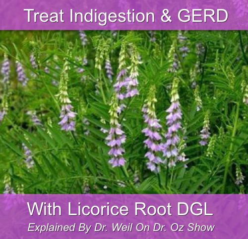 Use Licorice Root For Indigestion Treatment...http://homestead-and-survival.com/use-licorice-root-for-indigestion-treatment/