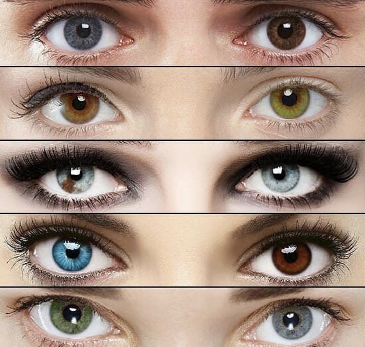 Pin By اااا On اجمل عيون بالعالم Rare Eye Colors Different Colored Eyes Beautiful Eyes Color