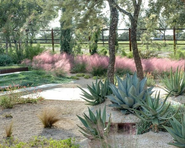 Drought tolerant landscaping reduces your water consumption up to 85%!