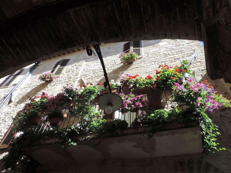 terrazzo fiorito Fiori, Terrazzo