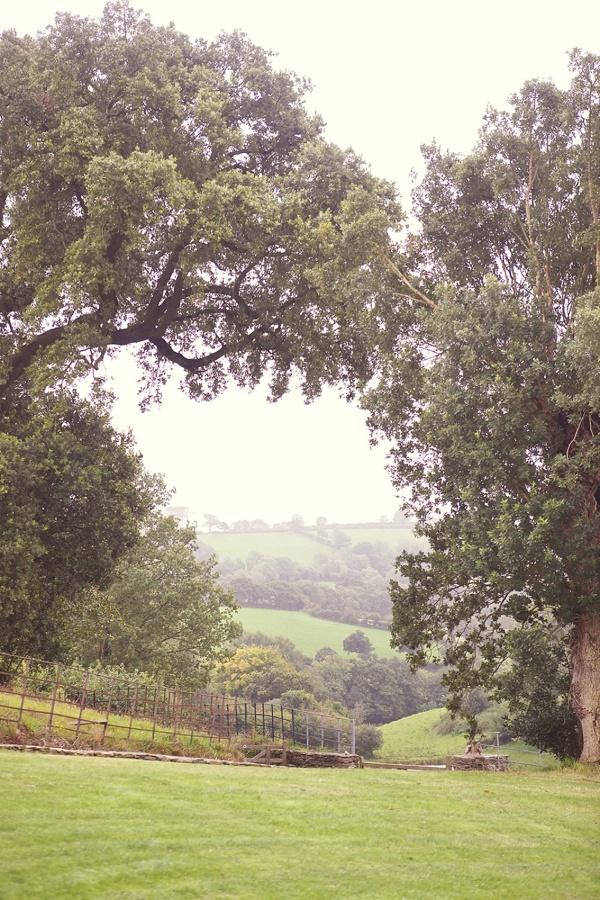 Photographer - Sarah Gawler  This could be Oak Run, CA