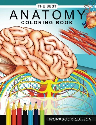 Anatomy Coloring Book Muscles And Physiology Workbook Edition AMAZON BEST SELLER