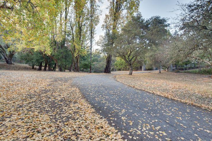 5070 Alpine Road Portola Valley, CA 94028 - Anthony Lum : Realtor