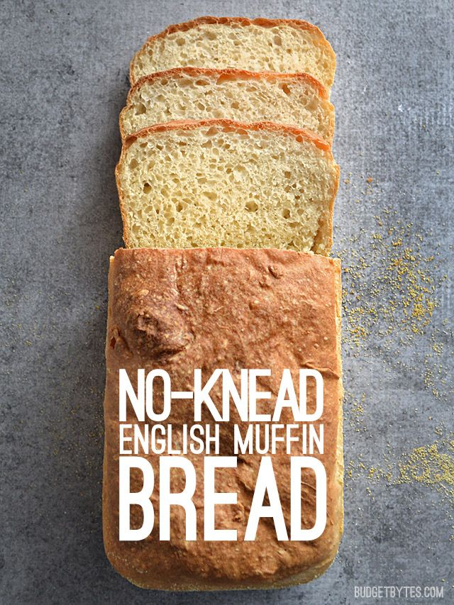No Knead English Muffin Bread with a crunchy cornmeal crust and soft, delicate crumb. - BudgetBytes.com
