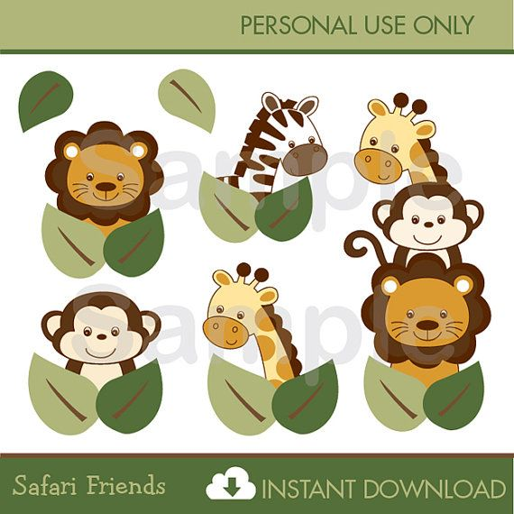 clipart jungle safari - photo #39