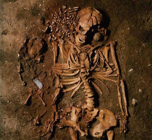 Ved Bøgebakken i Vedbæk, nær gravene fra Gøngehusvej, er der fundet over 20 skeletter fra jægerstenalderen. Her ses en kvinde med et lille drengebarn ved siden.