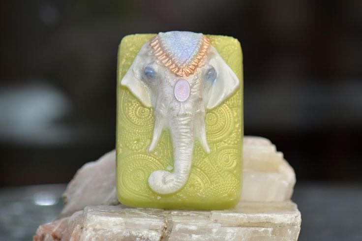 Slon indický 2 | Zobrazit plnou velikost fotografie