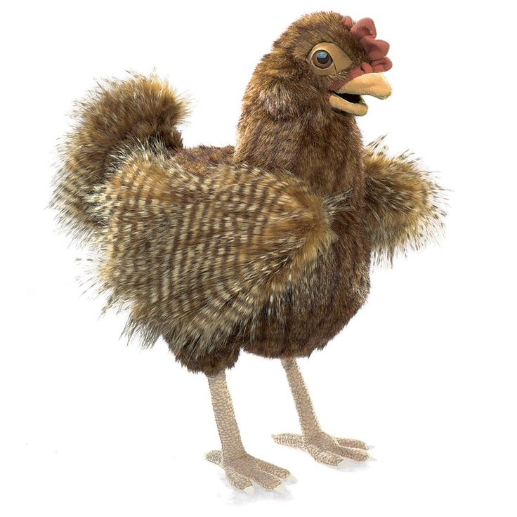 <p>Make story time something to cluck over with the Folkmanis® HEN puppet. With a feathery red-brown plush body and movable beak, this barnyard beauty will have everyone flocking around for creative play.</p>  <p><br /> <strong>Est. Time of Arrival: ** IN **</strong></p>