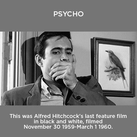 an analysis of the horror movie psycho directed by alfred hitchcock Psycho (1960) directed by alfred hitchcock home / movies / psycho / analysis   horror movies usually are titled after the monster dracula.