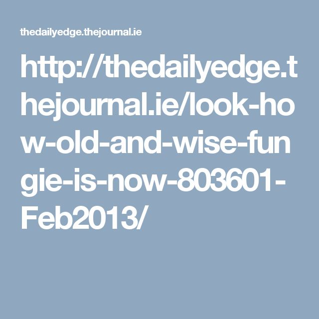 http://thedailyedge.thejournal.ie/look-how-old-and-wise-fungie-is-now-803601-Feb2013/