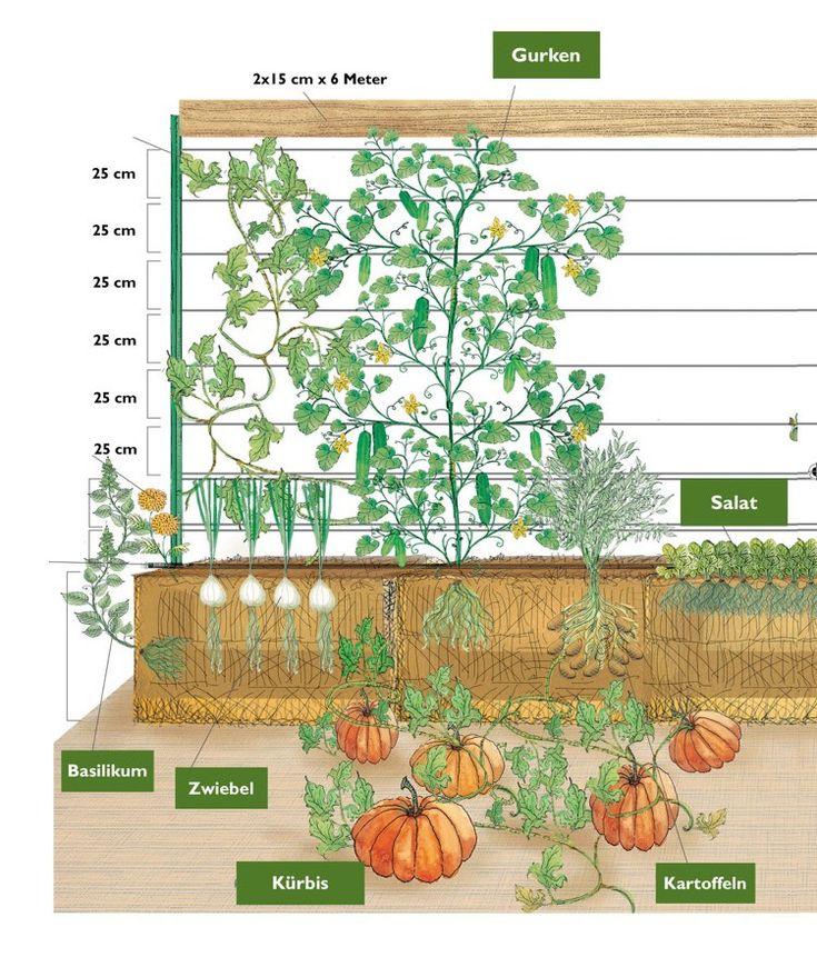 Die Besten 17 Bilder Zu Garten Auf Pinterest   Gärten ... Gaertnern Strohballen Vorteile Unkrautfrei