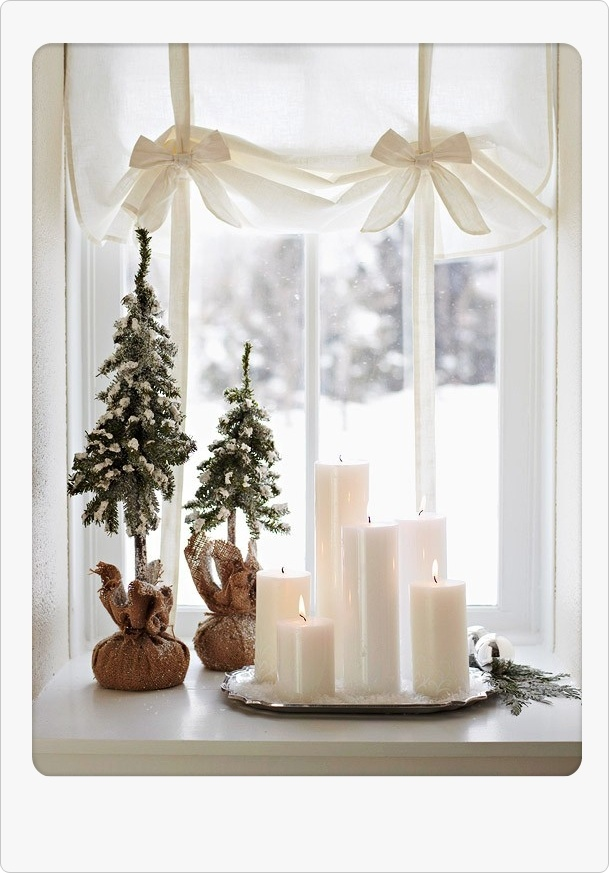 love little burlap wrapped trees....