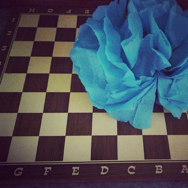 #portalpecaapeca #party #TissuePaper #game #GardenParty #papercrafts Follow us: http://www.pecaapeca.com http://www.facebook.com/portalpecaapeca