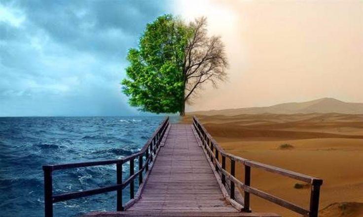 Ekoloji Nedir?