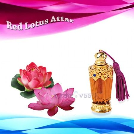 Red Lotus Attar, The Red Lotus Attar is famous for its wonderful smell. Associated with the Hindu Goddess of Wealth, the Red lotus is considered very holy, and as such is used in religious ceremonies. It is also used in the perfumery industry. Direct use of this attar should be avoided during pregnancy.
