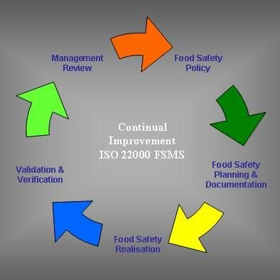 fire safety management plan guidelines