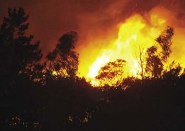 Bushfires : A Geography Resource for Australian Students - GTAV - Geography Teachers' Association of Victoria Inc.