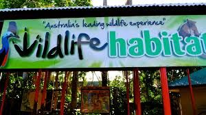 With Kstar Card ... $5 off adult entry at Wildlife Habitat Port Douglas.