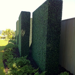 Hedge Deluxe. Square and elegant. Don't worry if it is not real. http://geraniumstreet.com/artificial-boxwood-hedge-panels/
