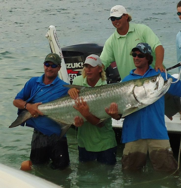 229 best sanibel fishing captiva fishing nature images for Captiva island fishing charters