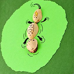 DIY cute and easy pistachio shell animal cards for any occasion.