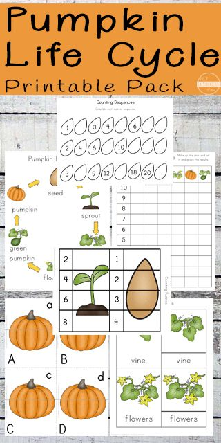 Common And Proper Nouns Worksheet 2nd Grade Word Best  Worksheets For Kindergarten Ideas On Pinterest  Brain Puzzle Worksheets with Map Test Practice Worksheets Pdf Free Pumpkin Life Cycle Worksheets For Preschool Prek Kindergarten First  Grade Nd Grade And Rd Grade Kids To Practice Alphabet Letters Life  Cycle  Patriotic Symbols Worksheet Word