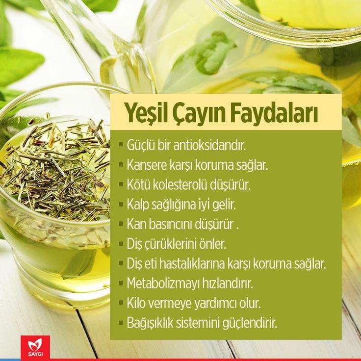 Yeşil çayın faydaları. #saygihastanesi #saglikipuclari #saglik #yesilcay