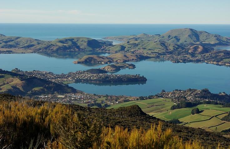 Otago Harbour from Mount Cargill; Dunedin New Zealand.
