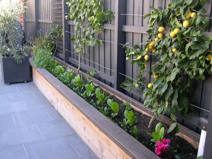 raised garden bed on a narrow side yard good use of space for shade loving plants gardening diy life - Garden Ideas Along Fence Line
