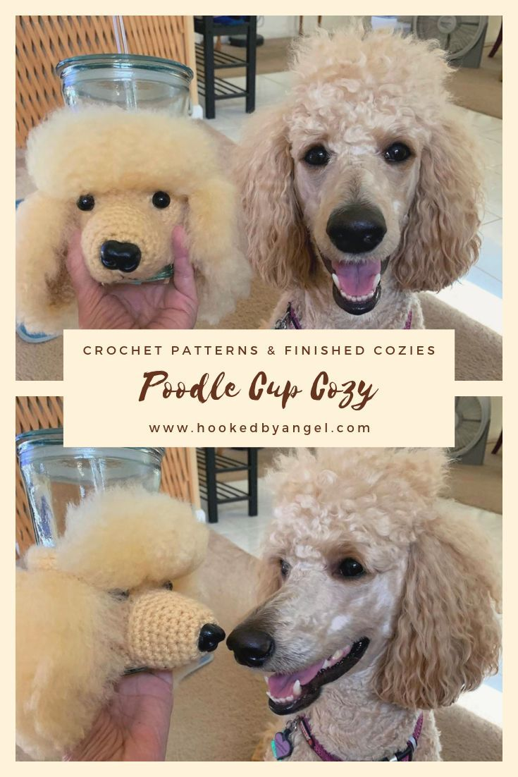 Nova The Poodle Approves Of Her Look Alike Crochet Dog Cozy There