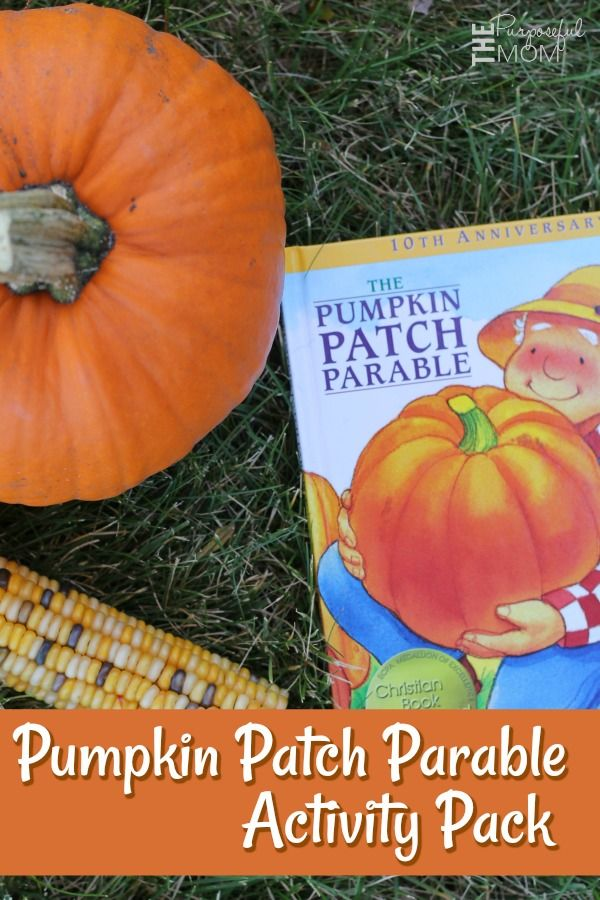 photo about Pumpkin Patch Parable Printable known as The Pumpkin Patch Parable Printable Video game Pack! Most straightforward of