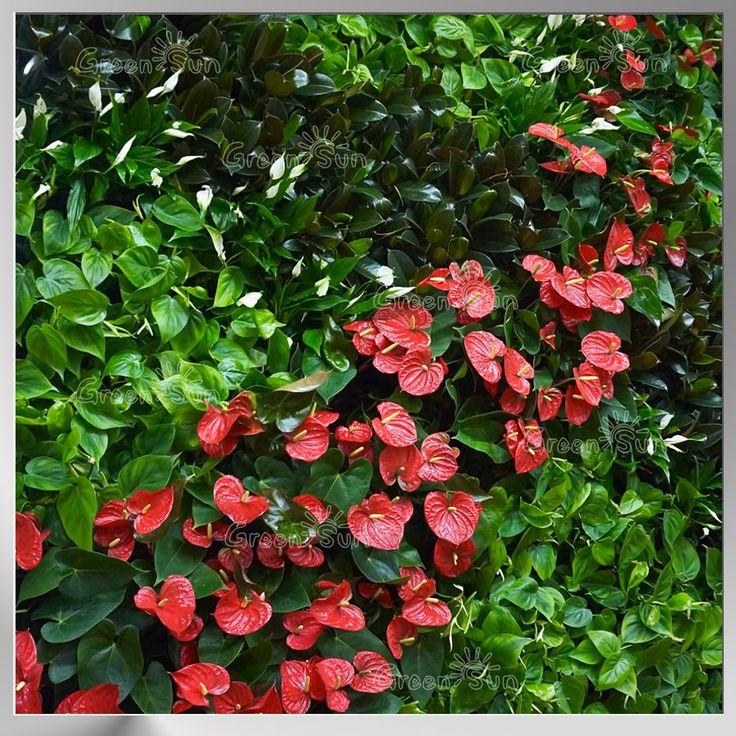 фитостены, фитомодули, живые стены, вертикальное озеленение, фитокартины, green wall, greenwall, фитостены Green Sky, вертикальные сады
