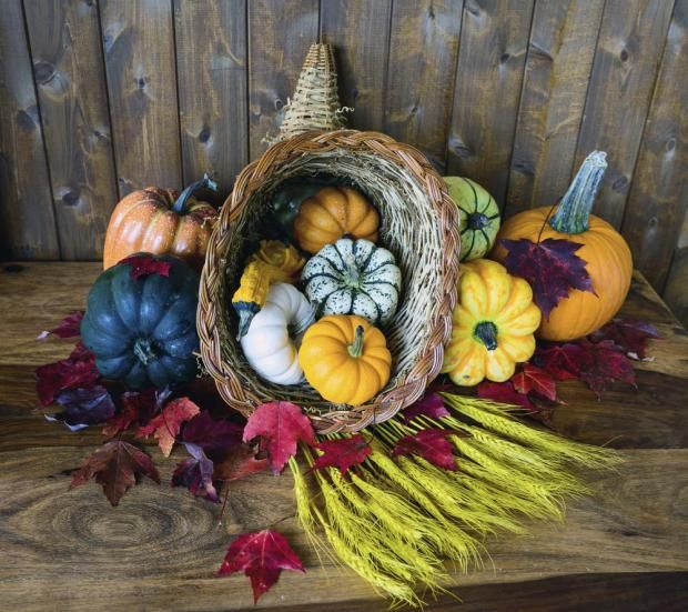 It's Autumn Equinox but what does it all mean? | Metro News