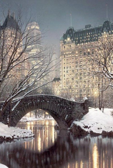 Twilight in Central Park, NYC! Def want to go here in the winter ! Done the middle of summer so pretty !!!
